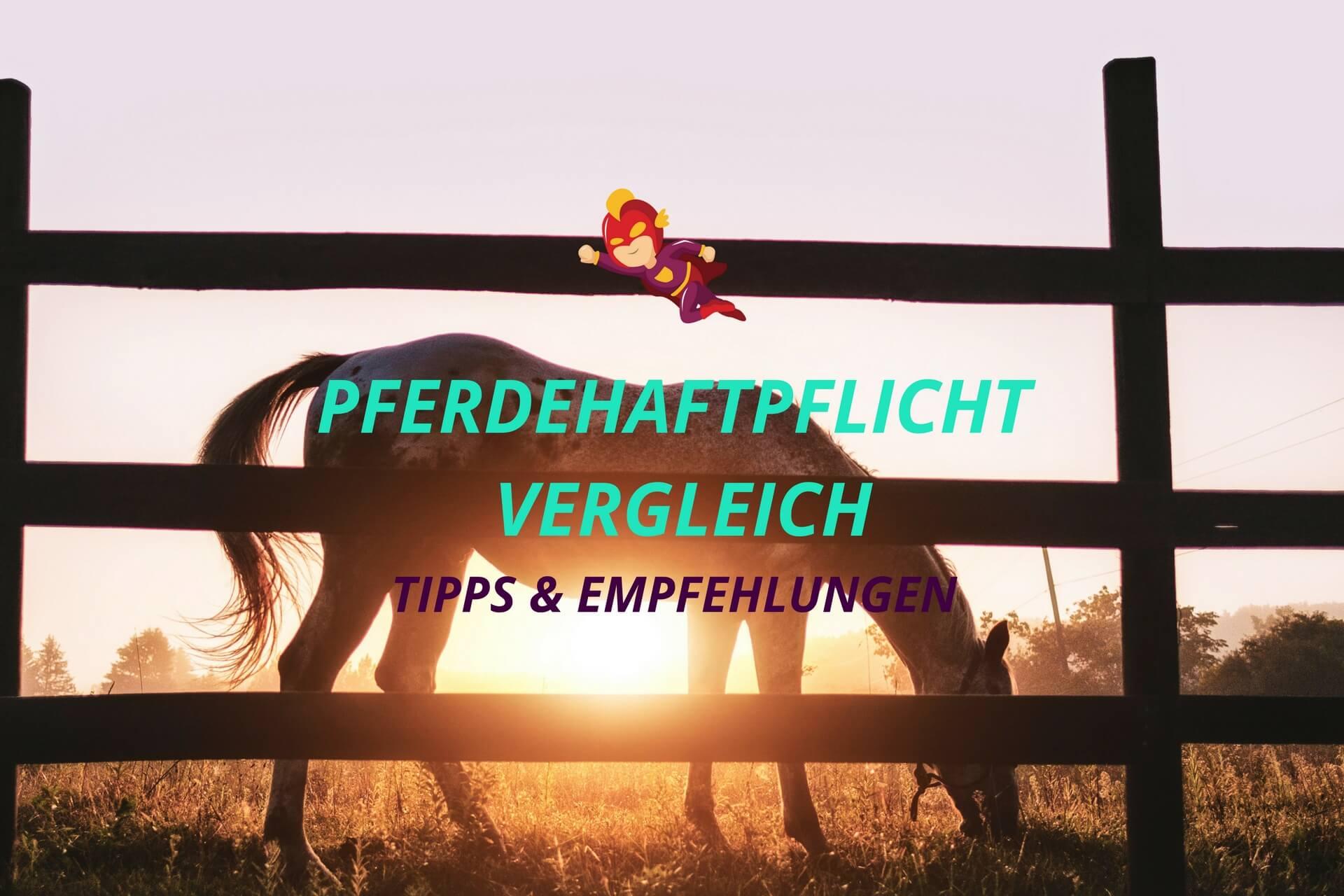 Pferdehaftpflichtversicherung Vergleich - Finanzhelden.org